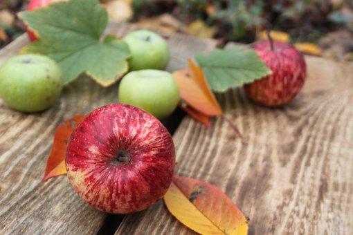 Aples, Fruit, Apple, Apples, Red Apple, Green Apple