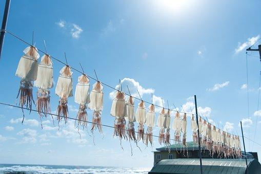 Sky, Sea, Jeju Island, Scenery, Blue Sky, Blue, Jeju