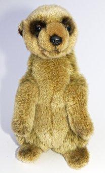 Meerkat, Soft Toy, Stuffed Animal, Figure