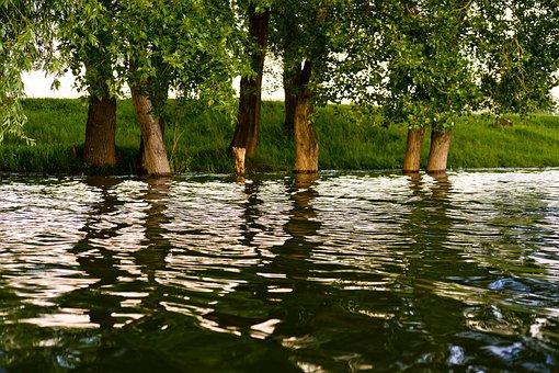 River, Sunset, Flood, Beautiful, Nature, Green, Dawn