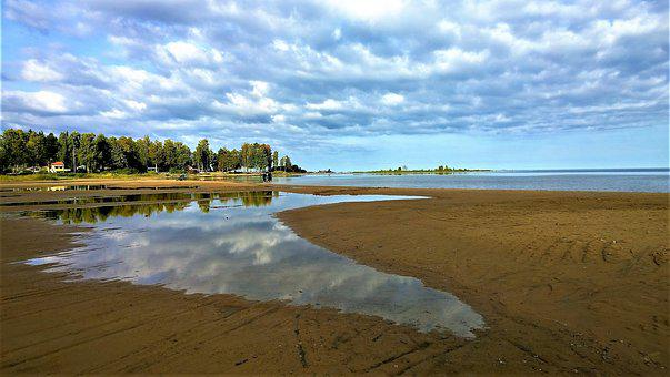 Lake, Beach, Horizon, Water, Himmel, Nature, Summer