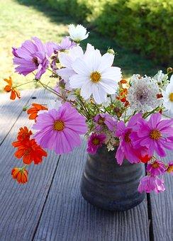Flower, Nature, Floral, Plant, Spring, Bloom, Vase