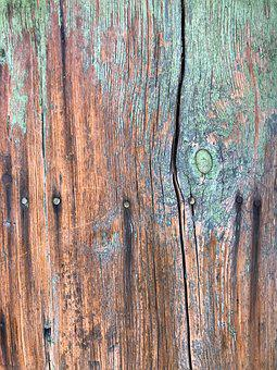 Tree, Texture, Colors, Paint, Board, Lines, Summary