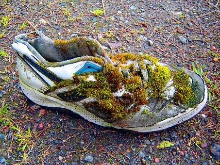 Shoe, Sport, Laziness, Transience, Sneakers, Run