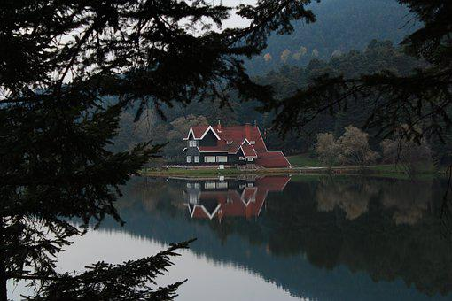Bolu, Abant, Pond, Nature, White, Reflection, Forest