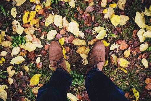 Fashion, People, Autumnm, Calf, Grass, Leaf, Loake