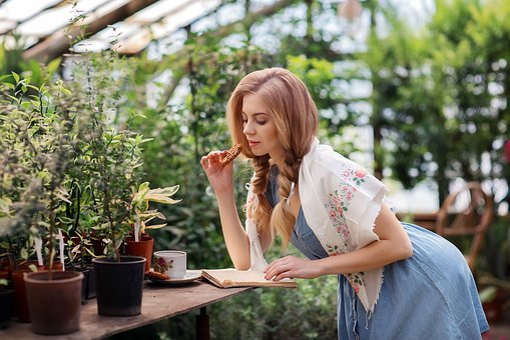 Girl, Care, Youth, Beauty, Beautiful Girl, Plants