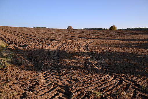 Field, Traces, Tractor, Way, Village, Poland, Nature
