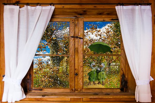 Window, Outlook, Autumn, Weather, Rain, Umbrella, Ducks