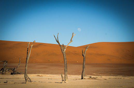 Namibia, Namib, Outdoors, Landscape, Travel, Africa