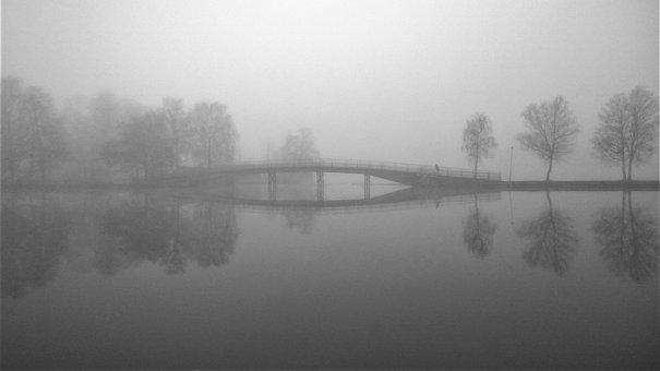 Foggy, Mist, Water, Bro, Autumn, Morning, Still