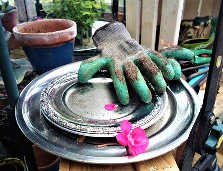 Garden, Flower, Gardening Gloves, Green Fingers