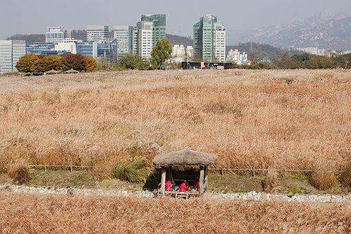 Sky Park, Seoul, Han River, I'm Not Even, Sangam, Park