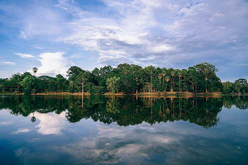 Water, Lake, Forest, Sky, Tree, Outdoor, Nature