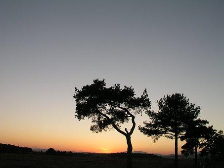 Sunset, Orava, Vistas