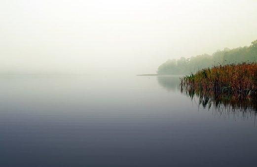Lake, The Fog, Sweet Rush, Scrubs, Morning