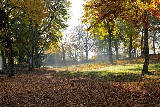 Autumn, Hike, Tuttlingen, Honing Mountain