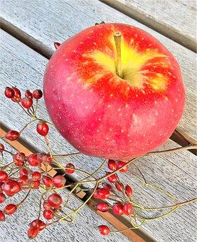 Apple, Fruit, Pome Fruit, Red, Sweet, Tart, Crisp