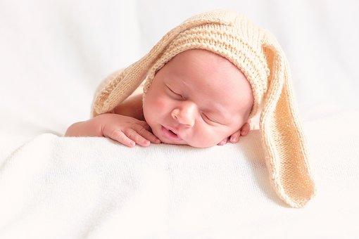 Bunny, Babe, Baby, Newborn, Photoshoot, Dream