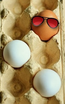 Egg, Hen's Egg, Brown Eggs, White Eggs, Coloring