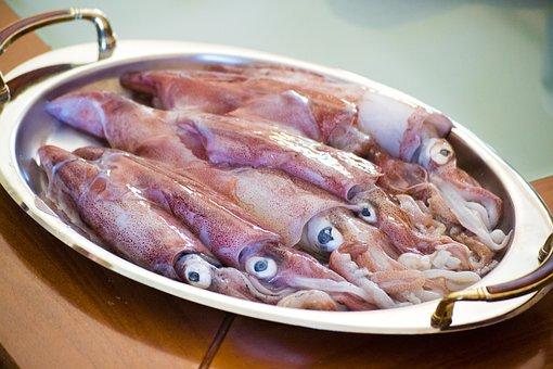 Calamari, Sea Food, Squid, Seafood, Fish, Food
