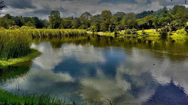 Landscape, Hdr, Horizon, Wetland, Afternoon, Nature