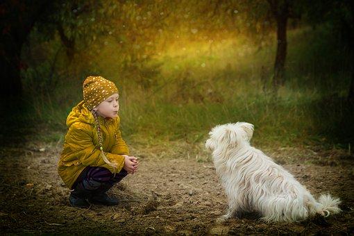 Friendship, Dog, However, Friends, Kindness, Animals
