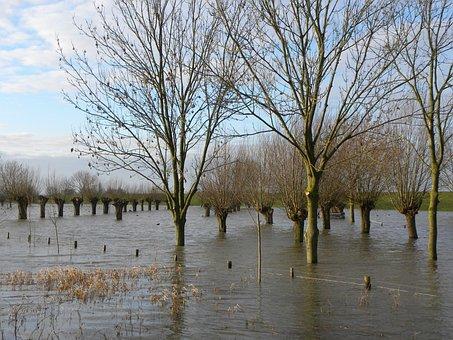 High Water, River, Leak, Schalkwijk, Culemborg, Flood