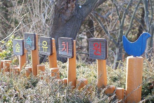 Sky Forest Kindergarten, Yeongjongdo, The Picture Park
