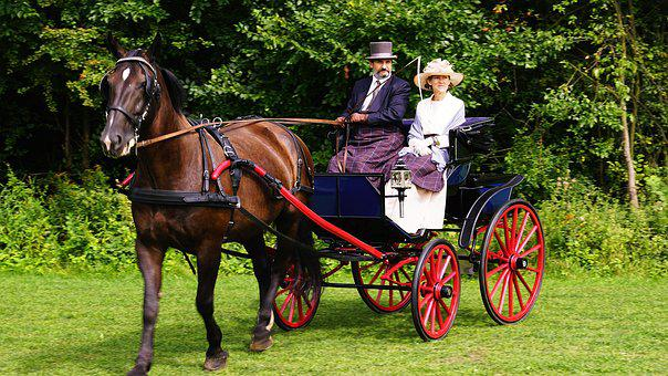 Cart, Chaise, Travel, Cab, The Horse, Animal, Horses