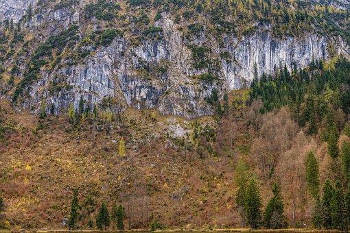 Rock Wall, Mountain, Imposing, Alpine, Trees, Hiking