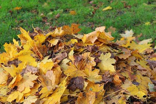 Foliage, Heap, Autumn Chores, Raking, Autumn