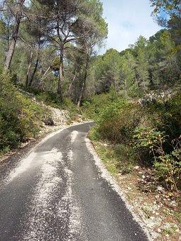 Path, Fall, Ceyreste, La Ciotat, Paca