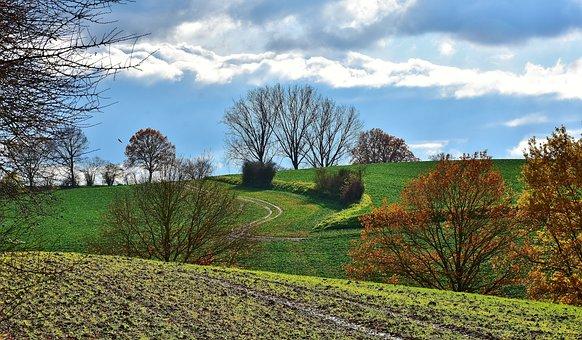 Landscape, Tree, Sunlight, Nature, Sky, Autumn, Clouds