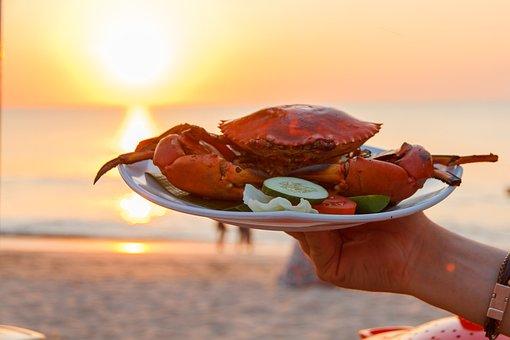 Sea, Crab, Animal, Nature, Water, Beach, Sea Animals