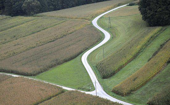 Landscape, Aerial View, Bird's Eye View, View, Road
