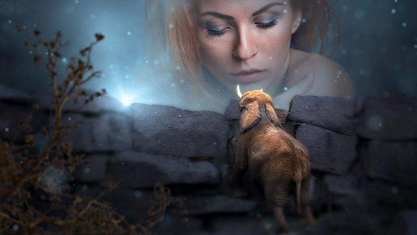 Fantasy, Portrait, Woman, Elephant, Mystical, Fairytale