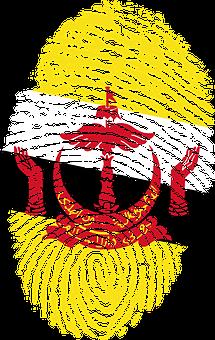 Brunei, Flag, Fingerprint, Country, Pride, Identity