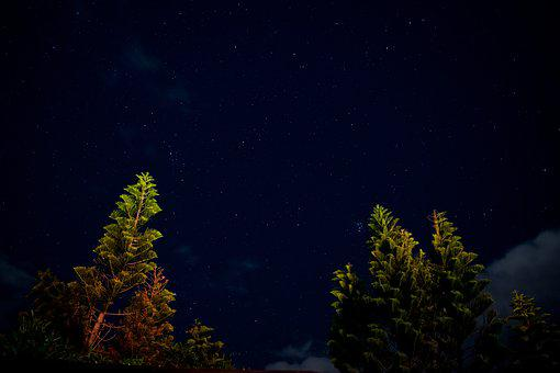 Landscape, Stars, Astrophotography, Trees