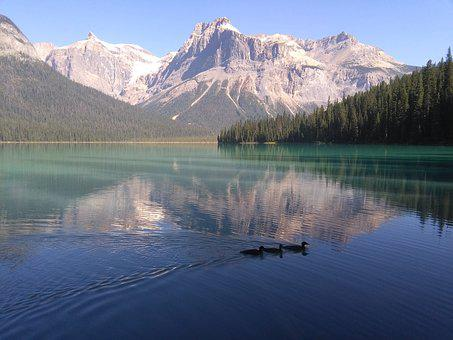 Lake, Rocky, Duck, Nature, Emerald Lake, Mountain