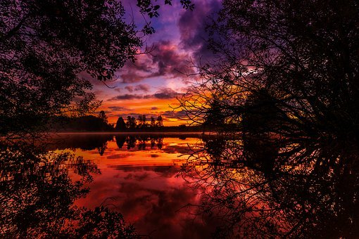 Autumn, Wallpaper, Background, Nature, Background Image