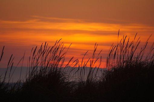 Sunset, Dungeness Spit, Seascape, Beach, Wilderness