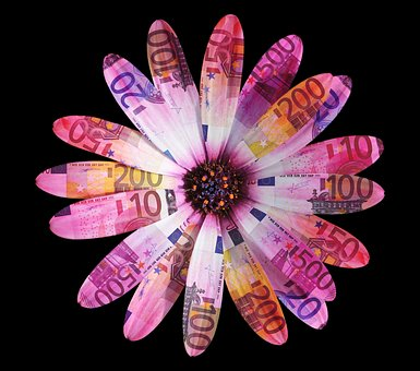 Flower, Flowers, Petals, Leaves, Daisy, Close Up, Euro