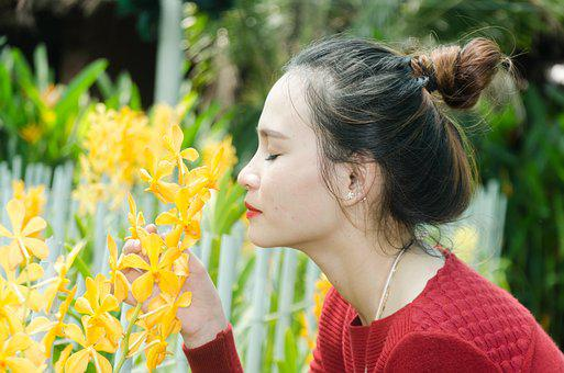 Girl, Orchids, Flower Care, Beautiful, Service United