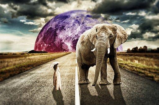 Surreal, Girl, Elephant, Fantasy, Background, Landscape