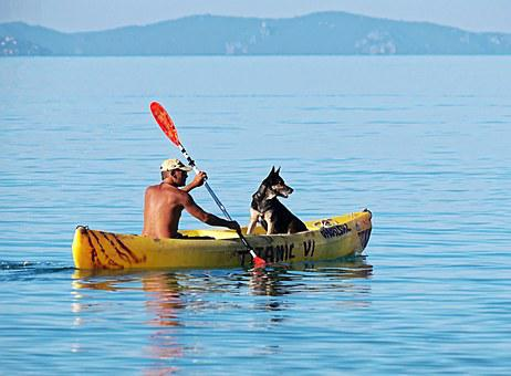 Boat, Oars, Man, Dog, Water, Paddle, Calm, Summer