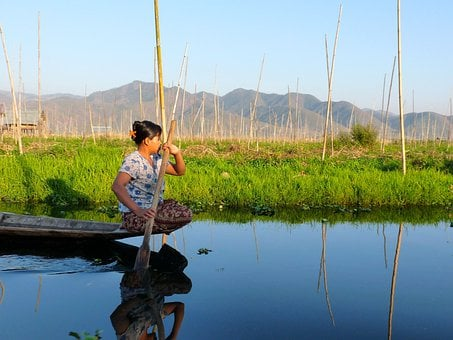 Fisherman, Inle Lake, Burma, Fishing, Net, Paddle