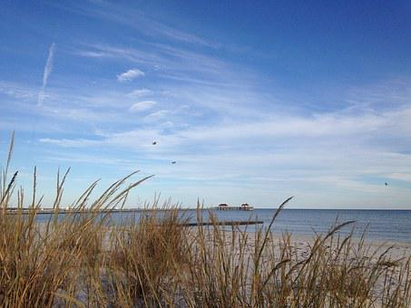 Gulf Coast, Beach, Sea Oats, Ocean, Sea, Water, Gulf