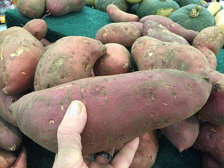 Sweet, Potato, Vegetable, Orange, Yam
