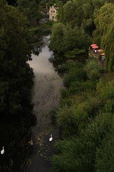 Avon, Swan Family, England, Abendstimmung, Water, River
